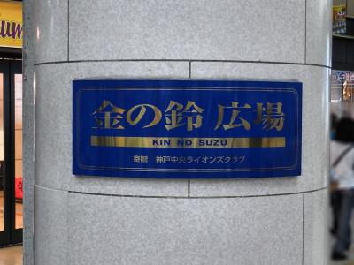 0030-1-gx200.jpg
